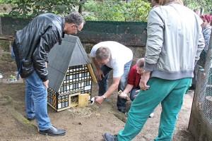 Einzug ins Hotel St. Florian. Tiergarten-Inspektor Michael Bussenius (l.) und die Projektteilnehmer zeigen den Meerschweinchen ihre neuen Domizile in Form von Halberstaedter Sehenswuerdigkeiten